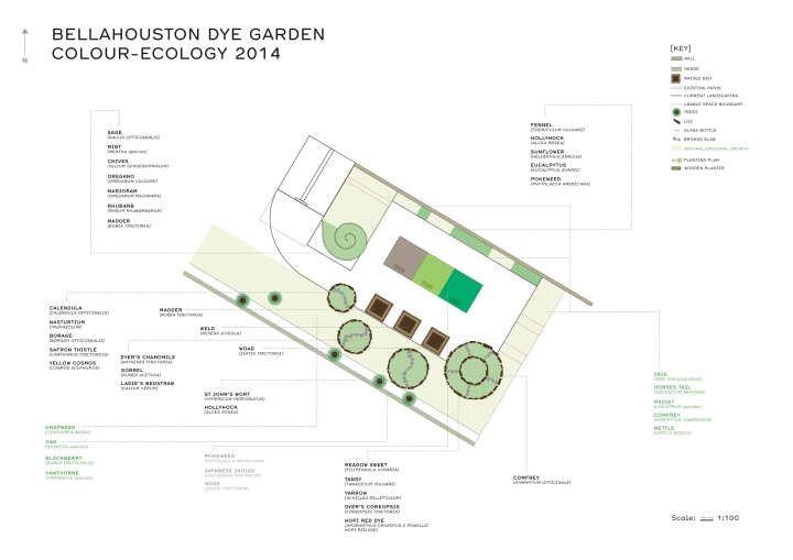 DYE Garden Bellahouston 2014 updated